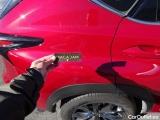 Lexus  NX 300H F SPORT 4WD #17